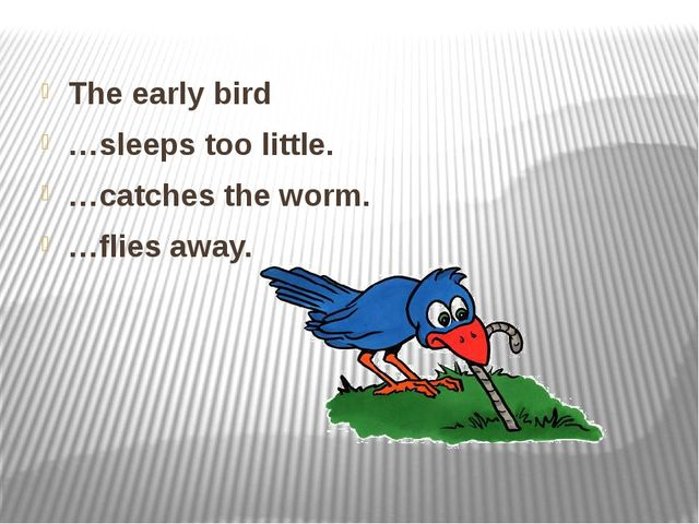 The early bird …sleeps too little. …catches the worm. …flies away.