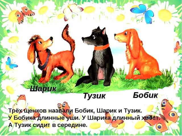 Тузик Бобик Шарик Трёх щенков назвали Бобик, Шарик и Тузик. У Бобика длинные...