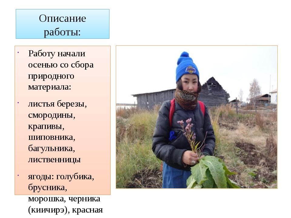 Описание работы: Работу начали осенью со сбора природного материала: листья б...