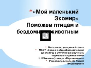 Выполнили: учащиеся 6 класса МБОУ «Средняя общеобразовательная школа №29 с уг
