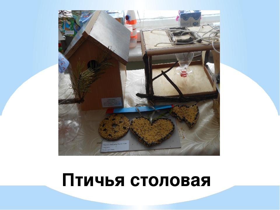 Птичья столовая