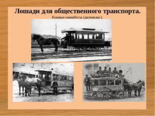Лошади для общественного транспорта. Конные омнибусы (дилижанс).