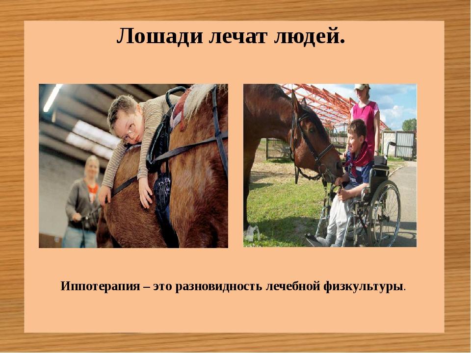 Лошади лечат людей. Иппотерапия – это разновидность лечебной физкультуры.