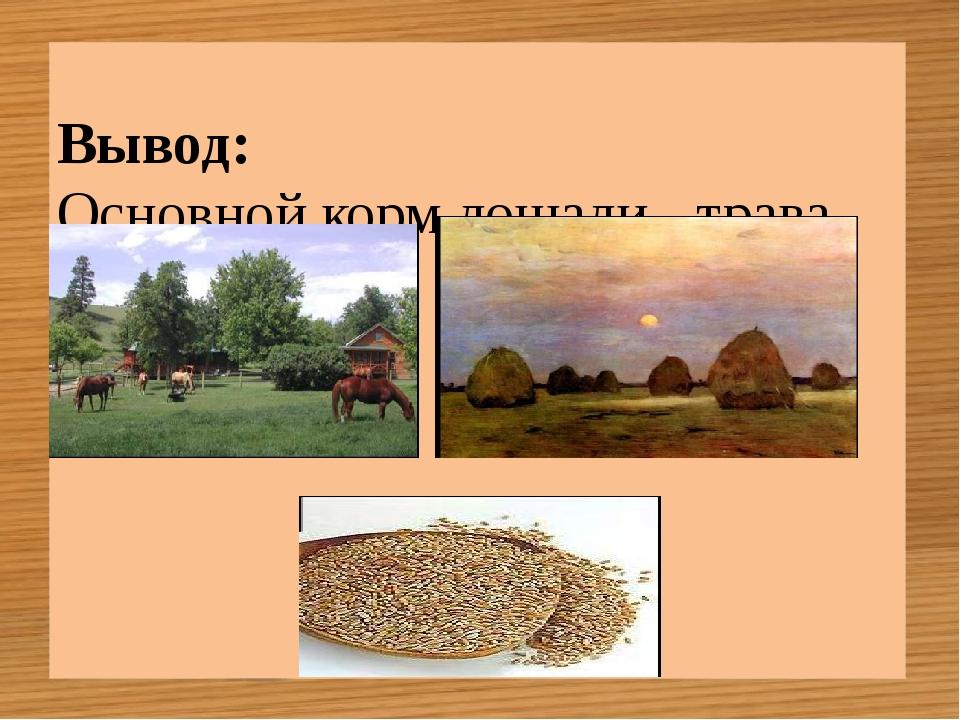 Вывод: Основной корм лошади - трава, сено и овёс.