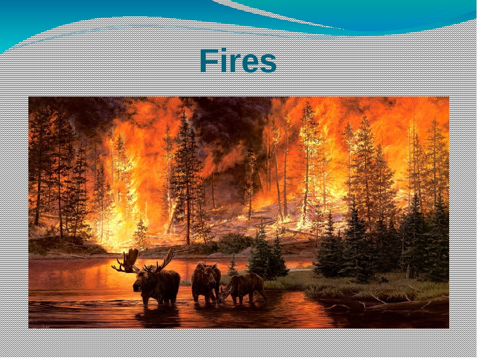 Fires