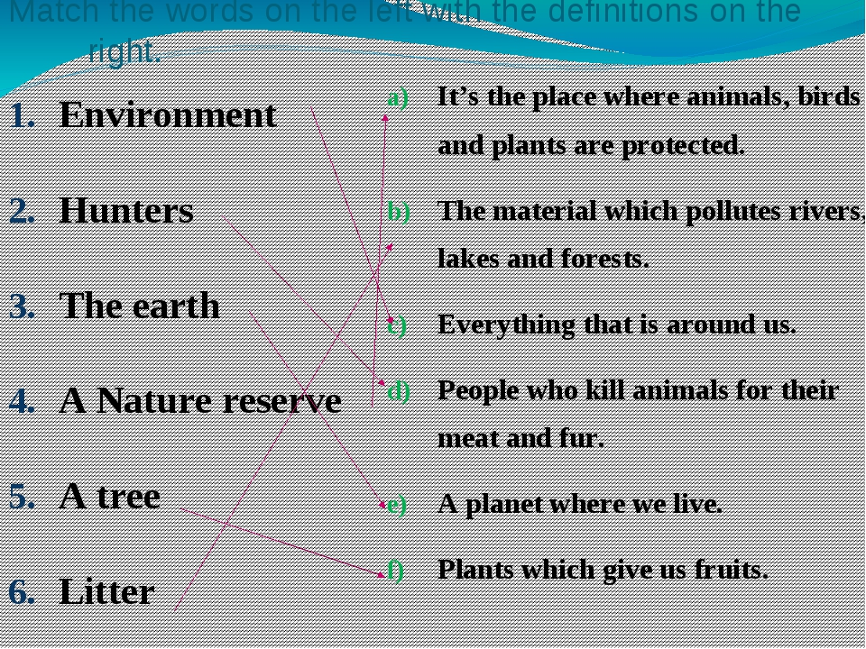 Match the words on the left with the definitions on the right. Environment Hu...