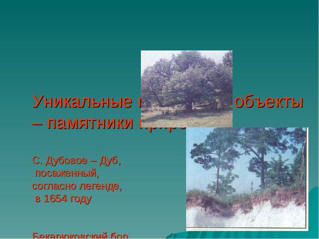 Уникальные природные объекты – памятники природы С. Дубовое – Дуб, посаженный...