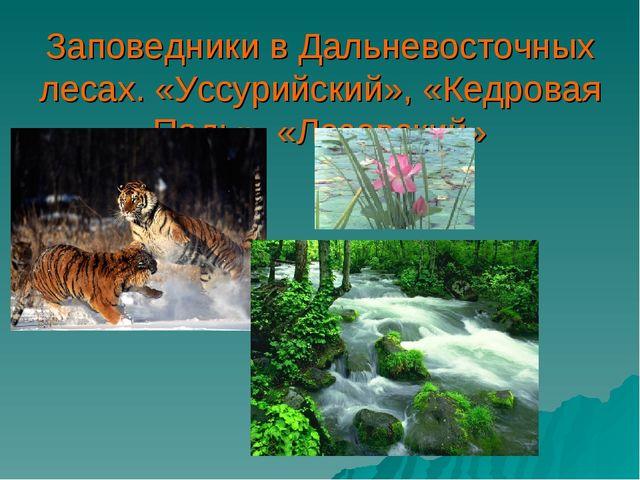 Заповедники в Дальневосточных лесах. «Уссурийский», «Кедровая Падь», «Лазовск...