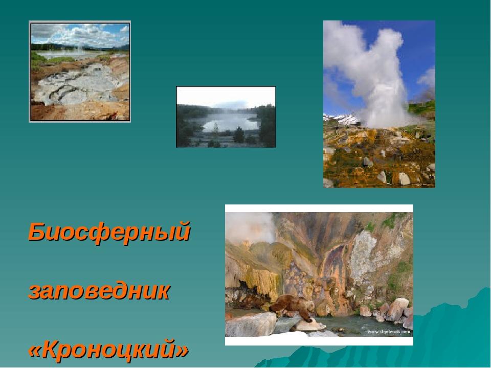 Биосферный заповедник «Кроноцкий»