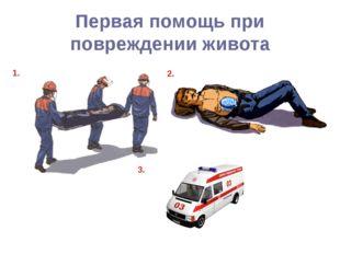 Первая помощь при повреждении живота 1. 2. 3.