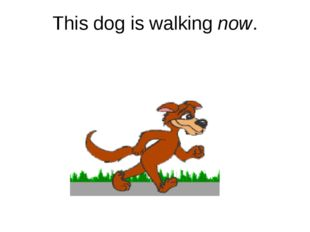 This dog is walking now.