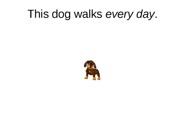 This dog walks every day.