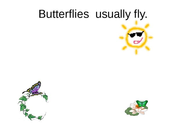 Butterflies usually fly.