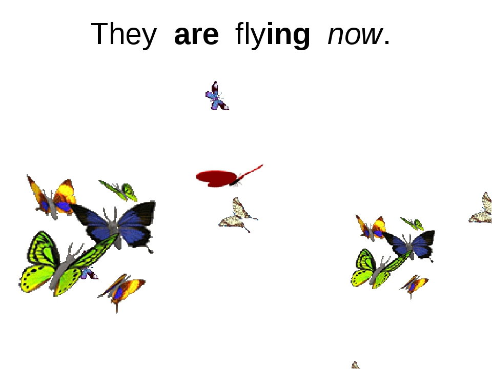 They are flying now.