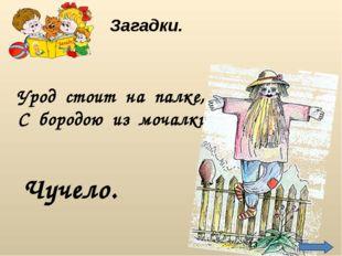Урод стоит на палке, С бородою из мочалки. Чучело. Загадки. http://img01.chit