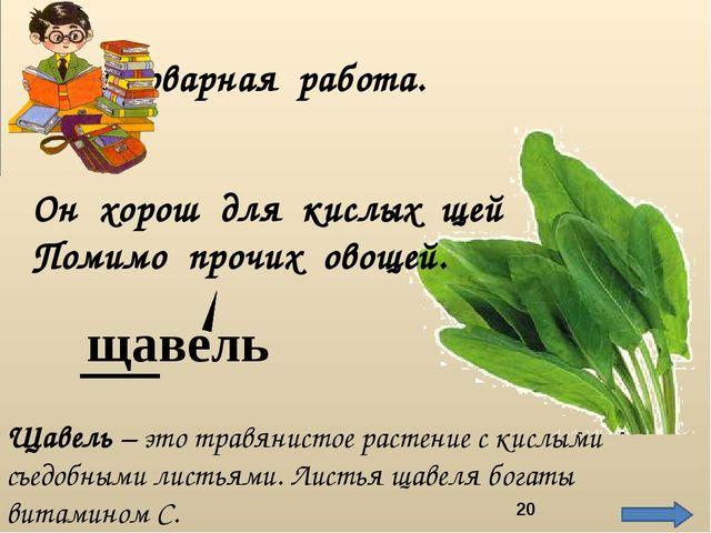Он хорош для кислых щей Помимо прочих овощей. щавель Словарная работа. Щавель...