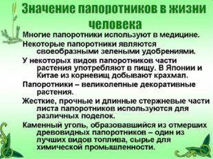 ГБОУ СОШ №1020 ГБОУ СОШ №1020