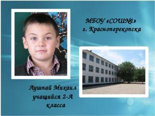 МБОУ «СОШ№1» г. Красноперекопска Лушпай Михаил учащийся 2-А класса