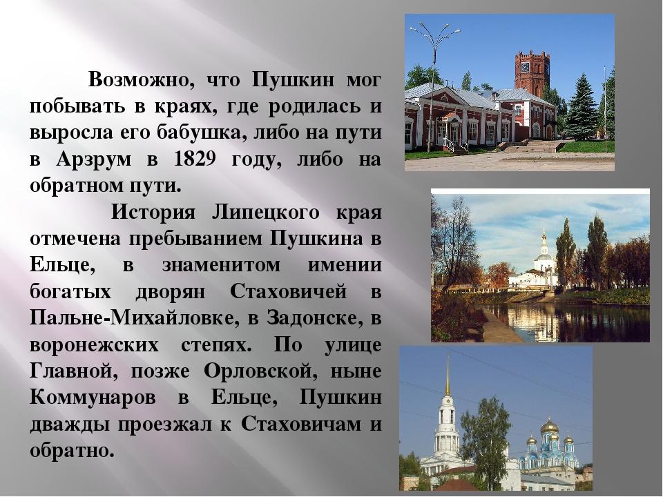 Возможно, что Пушкин мог побывать в краях, где родилась и выросла его бабушк...