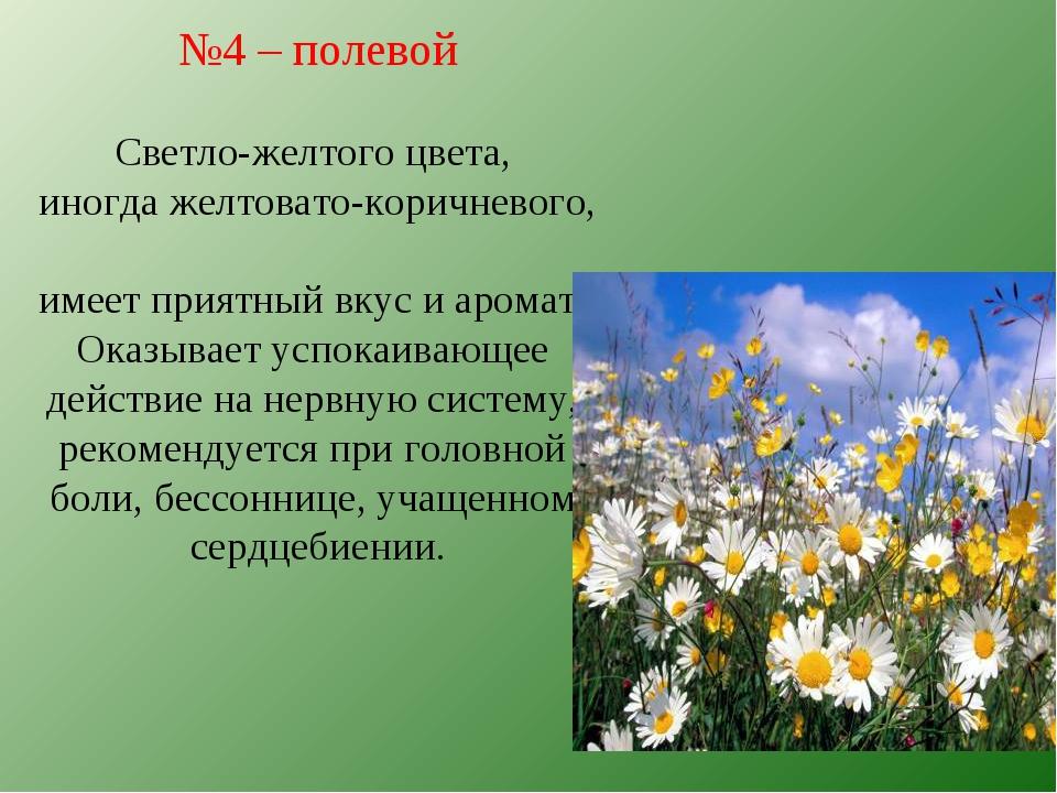 №4 – полевой Светло-желтого цвета, иногда желтовато-коричневого, имеет приятн...