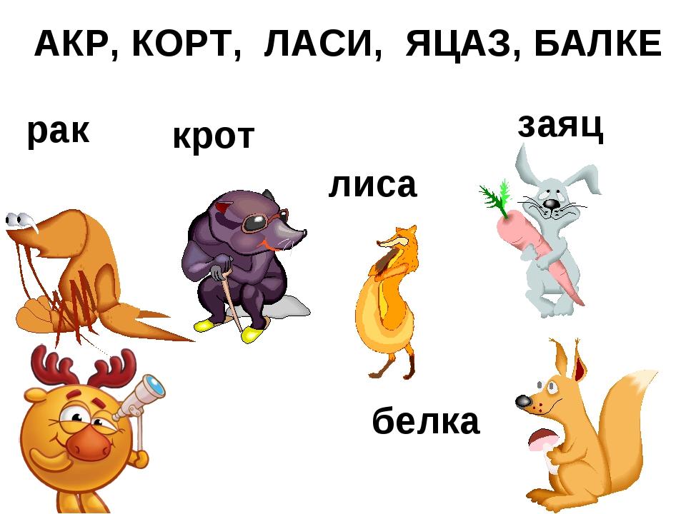 АКР, КОРТ, ЛАСИ, ЯЦАЗ, БАЛКЕ рак крот лиса заяц белка