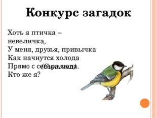 Конкурс загадок Хоть я птичка – невеличка, У меня, друзья, привычка Как начну