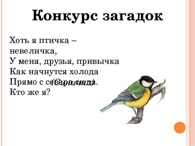 Конкурс загадок Хоть я птичка – невеличка, У меня, друзья, привычка Как начну...