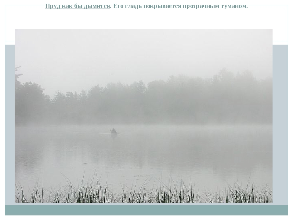 Пруд как бы дымится. Его гладь покрывается прозрачным туманом.