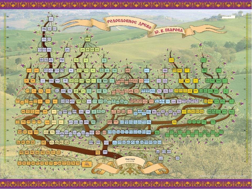 Генеалогическое дерево скачать бесплатно программу