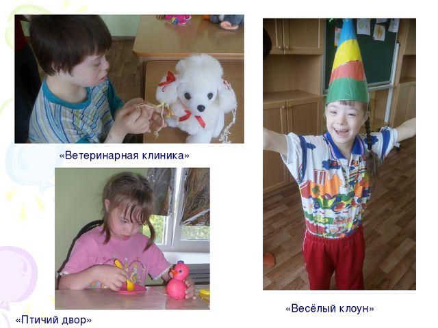 «Ветеринарная клиника» «Весёлый клоун» «Птичий двор»