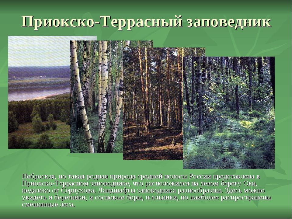 Приокско-Террасный заповедник Неброская, но такая родная природа средней поло...