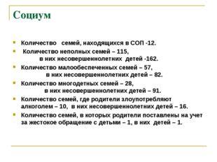 Социум Количество семей, находящихся в СОП -12. Количество неполных семей – 1
