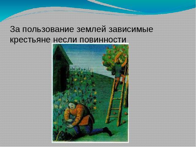 За пользование землей зависимые крестьяне несли повинности