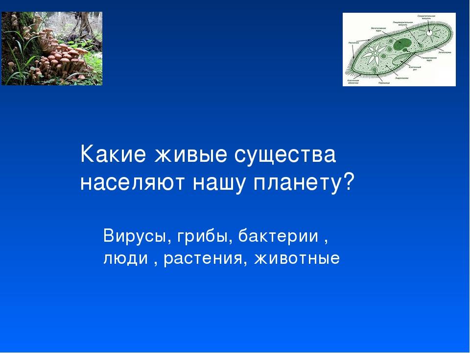 Какие живые существа населяют нашу планету? Вирусы, грибы, бактерии , люди ,...