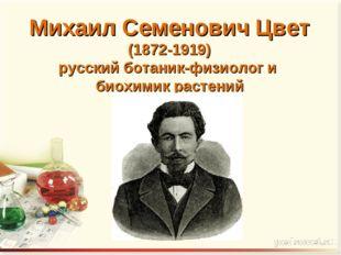 Михаил Семенович Цвет (1872-1919) русский ботаник-физиолог и биохимик растений