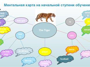 Ментальная карта на начальной ступени обучения The Tiger is can has got lives