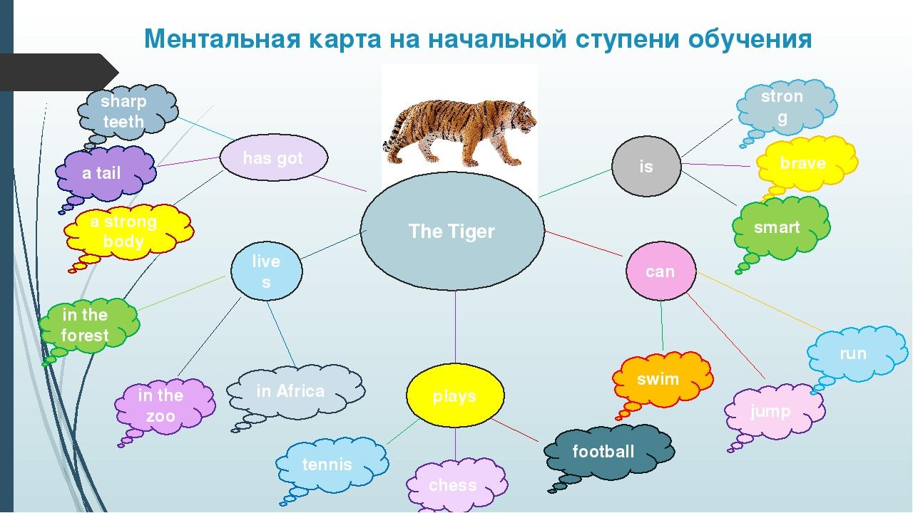 Ментальная карта на начальной ступени обучения The Tiger is can has got lives...