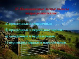 37. Полезащитные лесные полосы подразделяются на: а) продольные и поперечные;