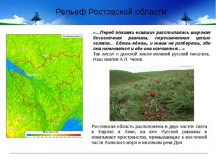 Рельеф Ростовской области «…Перед глазами ехавших расстилалась широкая бескон