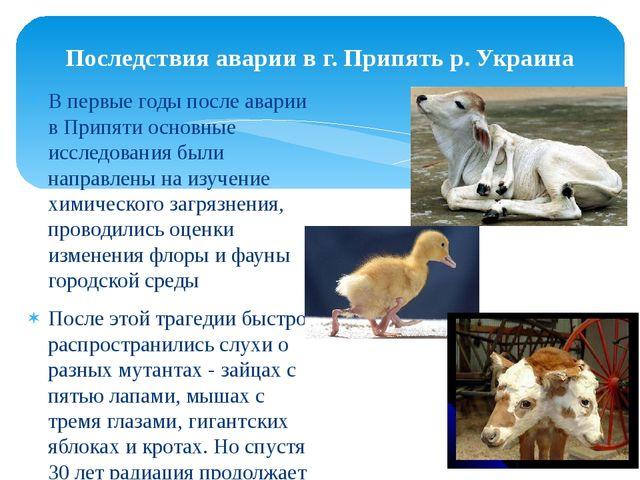 Последствия аварии в г. Припять р. Украина В первые годы после аварии в Припя...