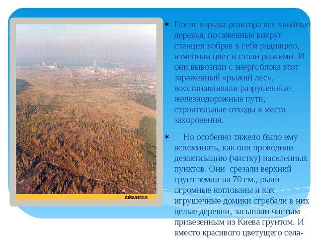 После взрыва реактора все хвойные деревья, посаженные вокруг станции вобрав...