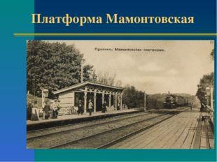 Платформа Мамонтовская