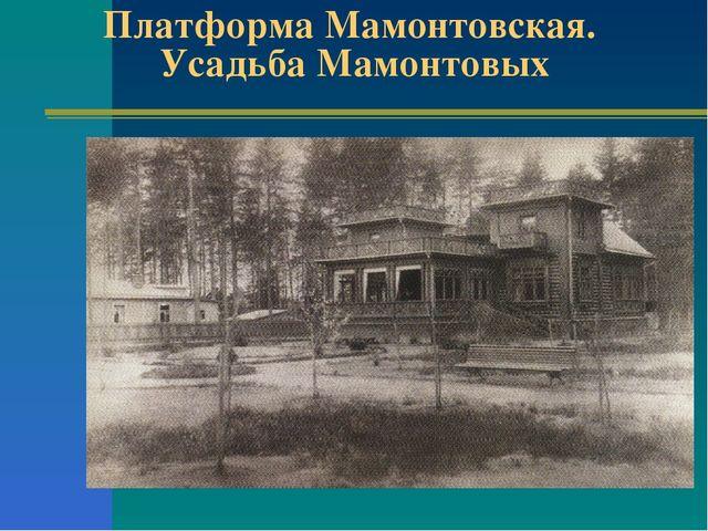 Платформа Мамонтовская. Усадьба Мамонтовых