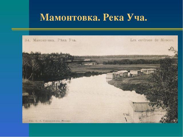 Мамонтовка. Река Уча.