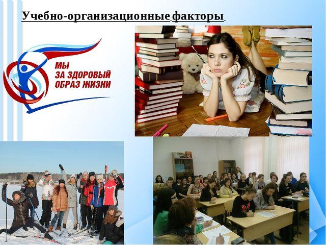 Учебно-организационные факторы