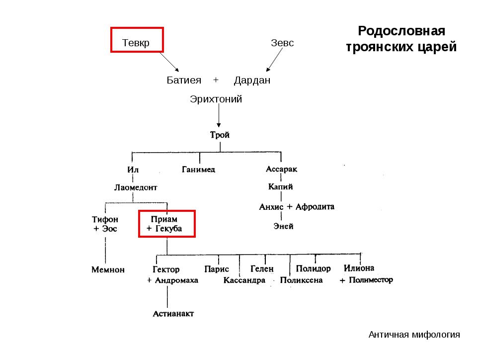 Тевкр Зевс Батиея + Дардан Эрихтоний Античная мифология Родословная троянски...