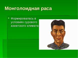Монголоидная раса Формировалась в условиях сурового азиатского климата