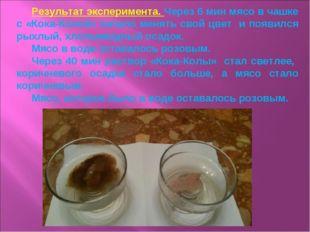 Результат эксперимента. Через 6 мин мясо в чашке с «Кока-Колой» начало менять