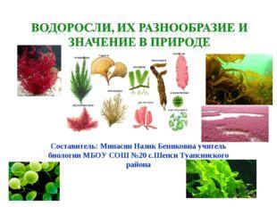 Составитель: Минасян Назик Бениковна учитель биологии МБОУ СОШ №20 с.Шепси Т