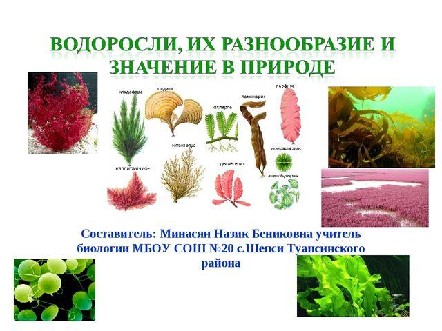 Составитель: Минасян Назик Бениковна учитель биологии МБОУ СОШ №20 с.Шепси Т...